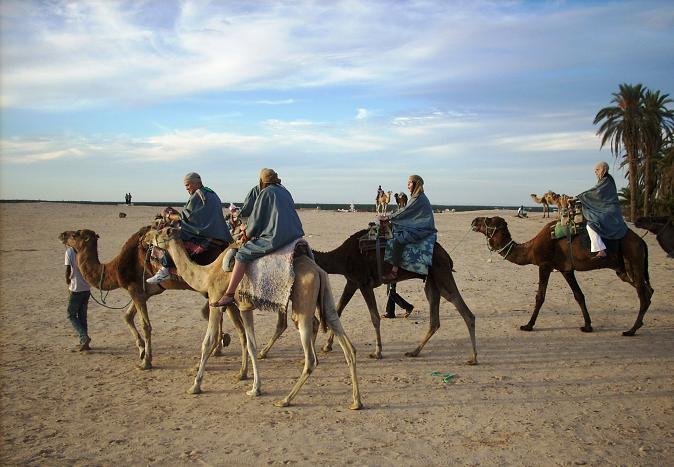 На верблюдах в Сахару