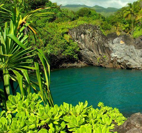 Путешествия на Гавайи