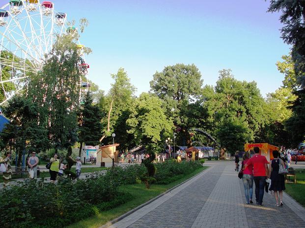 Колесо обозрения в парке