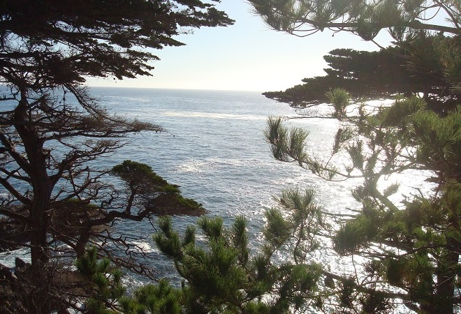 monterey-california-usa