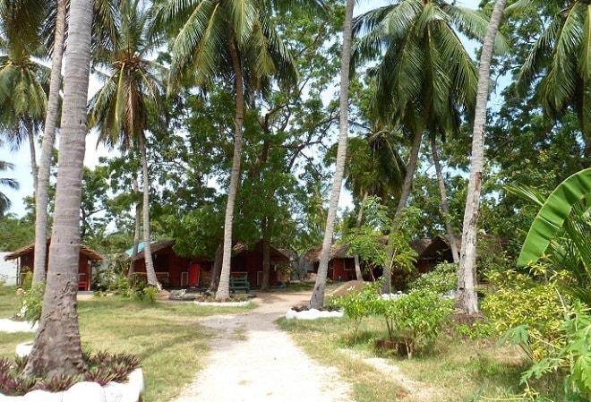 Цейлон. Природа острова