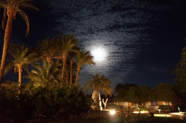 Путешествие в загадочный и древний Египет